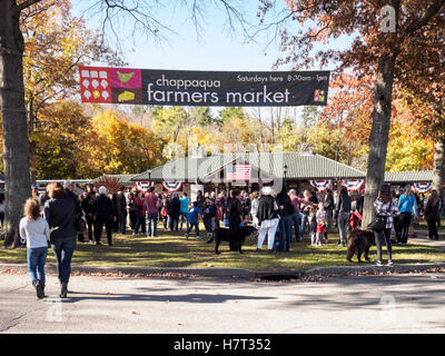 Chappaqua, NY, USA - 8 November 2016. Crowds gather in presidential candidate Secretary of State Hillary Clinton's - Stock Image