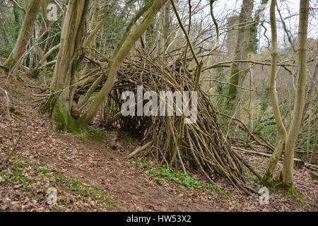 Man made shelter in woods used perhaps as a den by children - Stock Image