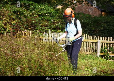 Female council worker mowing old flower plants at Stour River valley local nature reserve in the autumn 2017. - Stock Image