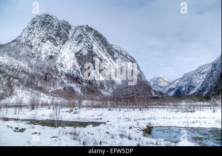 Picture of a snowy mountain with a small forest in front - Stock Image