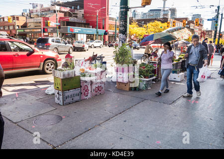 Street vendors selling vegetables along Spadina Ave in Chinatown in downtown Toronto Ontario Canada - Stock Image