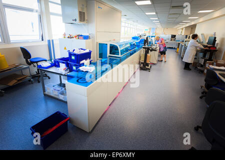 blood sciences automated analysis machine in hospital - Stock Image