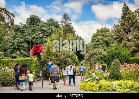 8 January 2019: Christchurch, New Zealand - Visitors entering the Rose Garden in Christchurch Botanic Gardens. - Stock Image