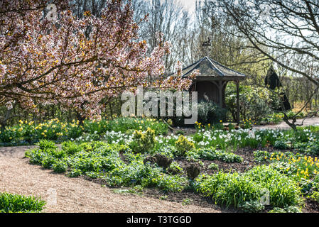 Royal Horticultural Society, Gazebo, overlooking the lower pond. Peaceful resting place in RHS Hyde Hall, with spring sunshine and flowers. - Stock Image