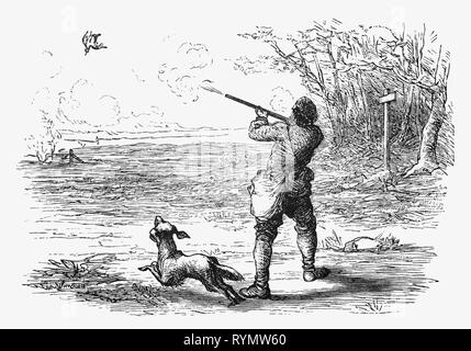 The young hunter shoots a partidge on the heathland. From the Camera Obscura, a 19th Century collection of Dutch humorous-realistic essays, stories and sketches in which Hildebrand, the author, takes an ironic look at the behavior of the 'well-to-do', finding  them bourgeois and without a good word for them. - Stock Image