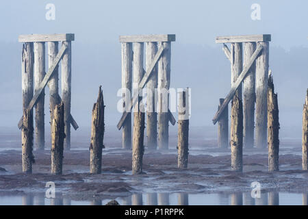Pilings and a railroad trestle remain at Trestle Bay; Hammond, Oregon, United States of America - Stock Image