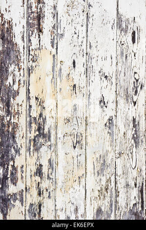 Old wooden panels with peeling paint as a background image - Stock Image