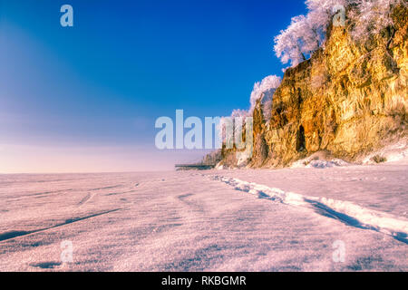Beautiful sandstone cliff, Zvartes rock, overgrown with trees on the bank of the Amata river, on white, snowy and cold winter day, Gauja National park - Stock Image