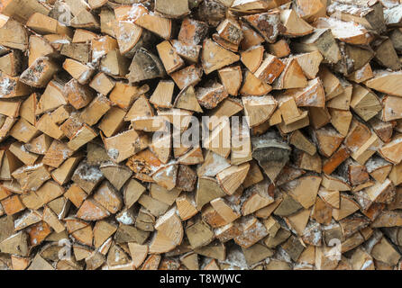 Big pile of birch logs sawn in the background - Stock Image