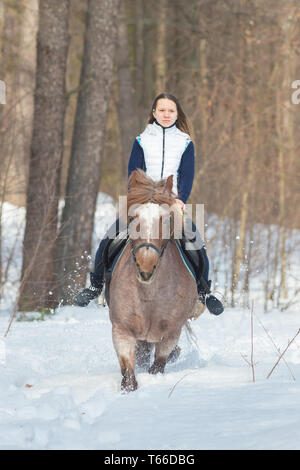 A young woman riding a brown horse in the winter forest - Stock Image