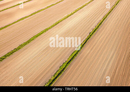 Plowed agricultural field aerial angle view. Soil background and texture - Stock Image