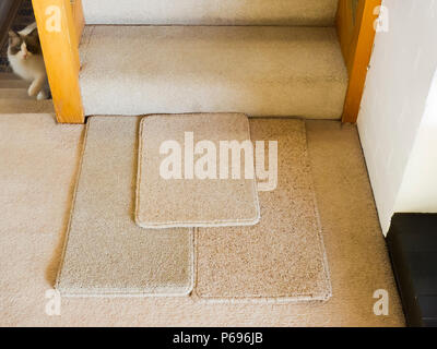 Colour matching carpet samples in an English home - Stock Image