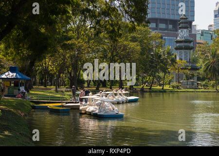 Swan pedal boats rental in Lumpini park, Bangkok, Thailand - Stock Image