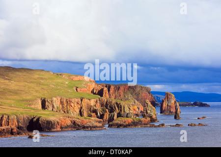 The Drongs red sandstone sea stacks in Braewick on rugged coastline. Eshaness, Shetland Islands, Scotland, UK, Britain - Stock Image
