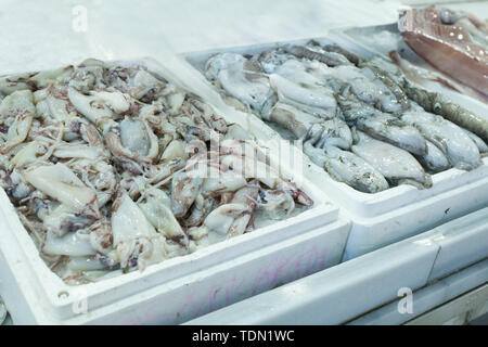 Authentic organic food. Seafood Italian delishes in fishmarket - Stock Image