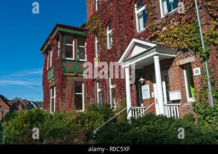 Ivy clad house in Bad Driburg, NRW, Germany. - Stock Image