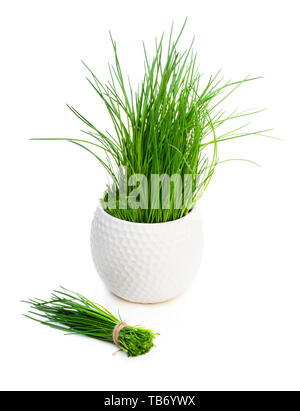 Bunch  of fresh chives and plant in pot isolated on white - Stock Image