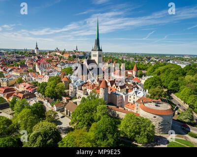 aerial view Tallinn medieval old town, Estonia, Europe - Stock Image