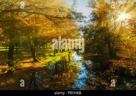 Autumn sun - Stock Image