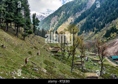 Mountain landscape, Jammu and Kashmir, India - Stock Image