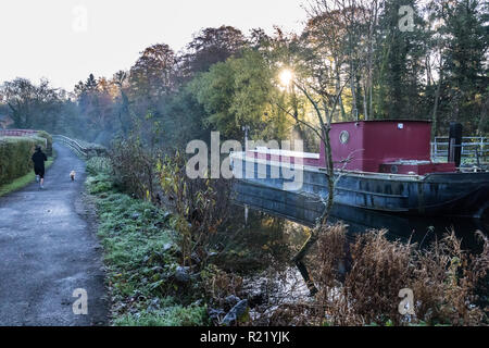 Sunlight bursts through the trees and mist on a cold frosty morning behind a canal barge with path alongside with girl joggin with dog. Lagan Towpath, - Stock Image