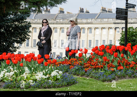 Bath, Somerset, UK, 29th March, 2019. Two women enjoying the warm sunshine are pictured walking past colourful Tulips in Royal Victoria Park. Credit:  Lynchpics/Alamy Live News - Stock Image