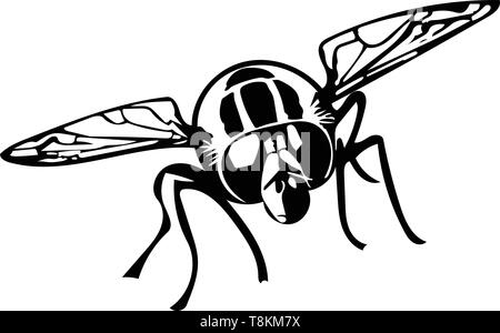 Black and white vector graphic of head-on hoverfly - Stock Image