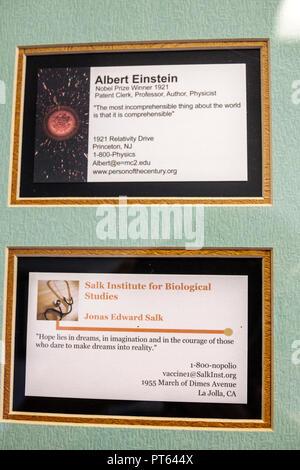 Miami Beach Florida humor humour business card cards Albert Einstein Jonas Salk - Stock Image