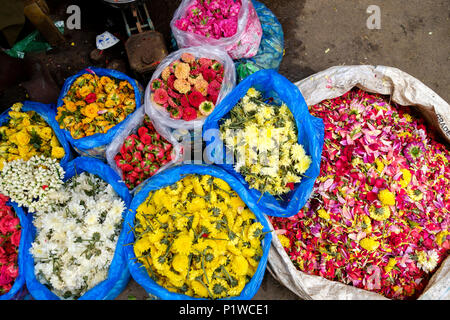 Colourful flowers and blooms for sale at Madurai Flower market, Mattuthavani, Madurai District, Tamil Nadu, India. - Stock Image