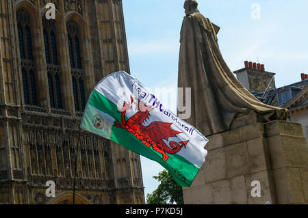 London, UK. 6th July 2018. A Welsh flag has the message 'healTCHareforall'  as members of the group 'We The Undersigned Have a Legal Right to use Cannabis'  protest in Old Palace Yard in support of Newport West Labour MP Paul Flynn's Private Member's Bill to allow the medical use of cannabis was expected to be debated this afternoon. Objections by MPs prevented the debate and it was pushed back until October. Credit: Peter Marshall/Alamy Live News - Stock Image