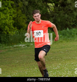 Chagford 2 Hills Race 2019, one athlete running into the finish, with medal, and being massaged post race - Stock Image