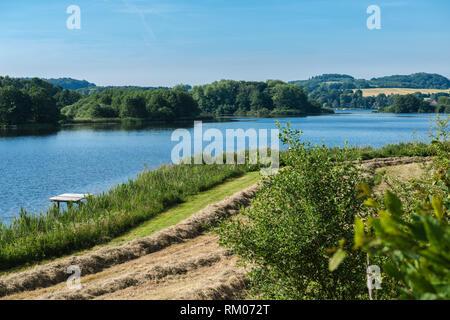 Bossee or Lake Boss, a side lake of Westensee, Nature Park Westensee,  Westensee, district of Rendsburg-Eckernförde, Schleswig-Holstein, Germany - Stock Image