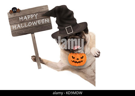 smiling pug puppy dog holding up wooden sign with happy halloween and wearing witch hat and pumpkin, isolated on - Stock Image