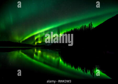 Green Northern lights, Tongass National Forest, near Juneau, Southeast Alaska; Alaska, United States of America - Stock Image