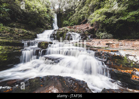 McLean Falls Walkway, Catlins Forest Park, South Island, New Zealand, Pacific - Stock Image