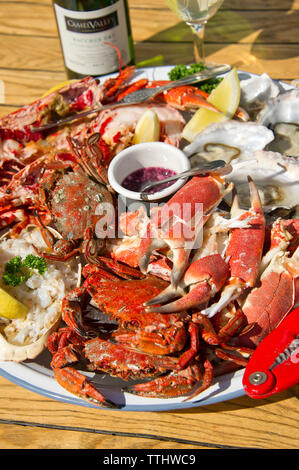 Seafood platter including lobster, crab, oysters etc. - Stock Image