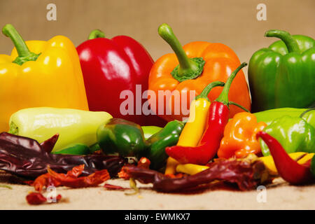 Stock image of chilli pepper still life, very colorful and varied - Stock Image