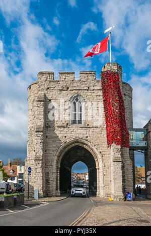 Cascade,Red Poppies,Westgate Towers,Canterbury,Kent,England. Made from thousands of plastic bottles and sprayed red.  British Legion - Stock Image