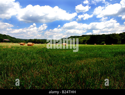 This was taken in rural Ohio on a nice summer day. The clouds were perfect during this shot. - Stock Image