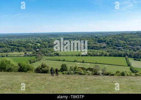 Box Hill, Surrey, England - Stock Image