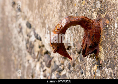 An iron ring attached to a sea wall, now rusted and broken by years of exposure to the sea. - Stock Image