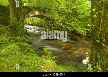 Buckland Bridge on Dartmoor - in the dappled late afternoon sunlight - Stock Image