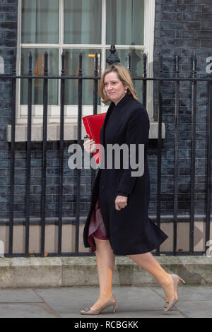 London, United Kingdom. 15 January 2019. Amber Rudd, Secretary of State for Work and Pensions arrives at 10 Downing Street for the weekly cabinet meeting ahead of the critical Brexit vote. Credit: Peter Manning/Alamy Live News - Stock Image
