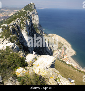 The Summit of the Rock of Gibraltar summit highest point looking down town Upper Rock Nature Reserve Gibraltar Europe - Stock Image