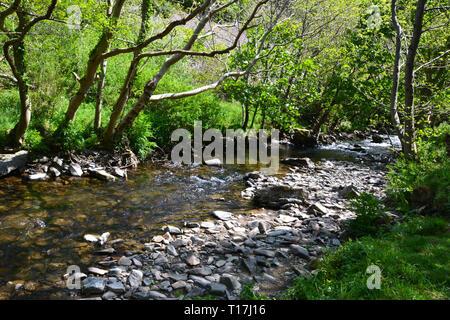 Stream running through Heddon Valley, Devon, UK - Stock Image