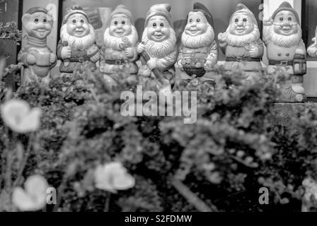 A row of garden gnomes - Stock Image