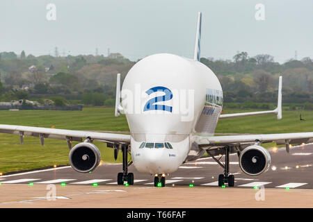 Airbus transport Beluga aircraft number 2 at Hawarden airport. - Stock Image