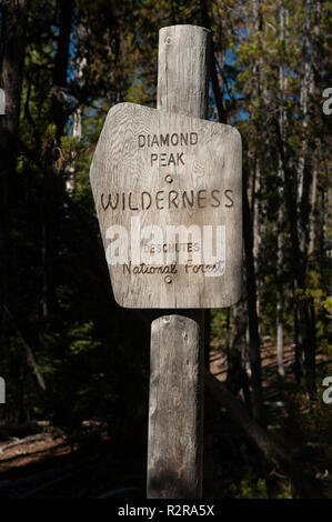 Older-style official US Forest Service wilderness boundary sign.  Carved in wood, unpainted. - Stock Image