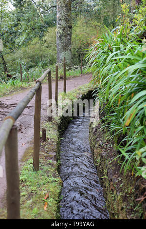 Levada walk path located up in the hills in the island of Madeira. Popular place to do hiking by travelers. In this photo you can see water flowing. - Stock Image