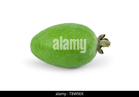 Tropical fruit feijoa (Acca sellowiana) isolated on white background - Stock Image